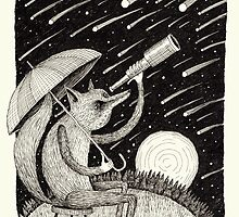 Meteor Shower by Alex G Griffiths