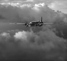 RAF Coastal Command Vickers Warwick ASR by Gary Eason + Flight Artworks