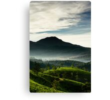 Misty Sunshine Canvas Print