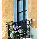 Window Terrace, Cagliari, Sardinia by Claire McCall