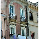 Italian Architecture by Claire McCall