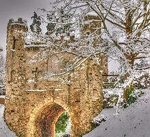 Reigate Castle by AndyHuntley