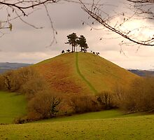 Colmers Hill by Mike  Waldron