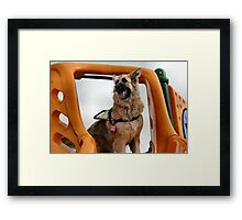 Looking for kids to slide with! Framed Print