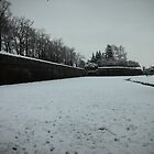 snowy walls, 2009 Lucca 2 by elphaba