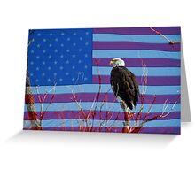 American Bald Eagle 3 Greeting Card