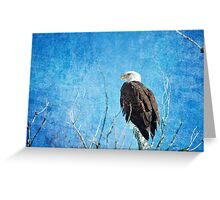Bald Eagle Blues Greeting Card