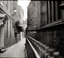 Up Our Alley by Andy Freer