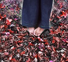 Barefoot in November by Kellice