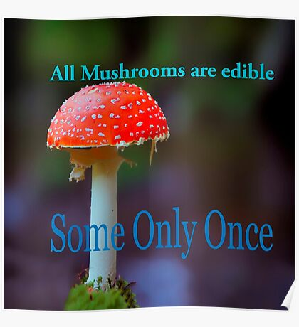 Famous humourous quotes series: All mushrooms are edible. Some only once  Poster
