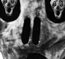 Skulls - Fear Sticker
