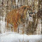 Siberian Summer by Alan Mattison