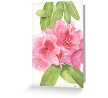 Pink Delight - Rhododendron Greeting Card