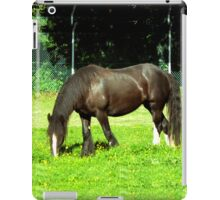 crunchie iPad Case/Skin