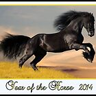 Year of the Horse ~ 2014 by ©The Creative  Minds