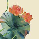 Lotus bloom by Kanika Mathur