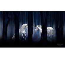 WHITE UNICORNS Photographic Print
