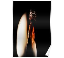 Dying Embers Poster