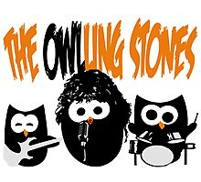 The Owl-Ling Stones Photographic Print