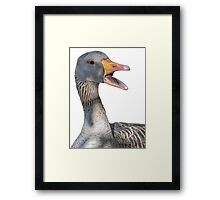 Duck face closeup Framed Print