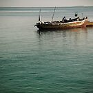 Zanzibar by Vincent Riedweg