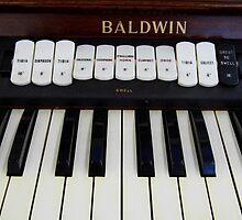 Baldwin by WildestArt