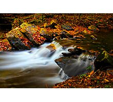 Autumn Fall Photographic Print