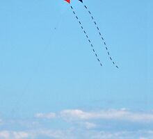 Let's Go Fly A Kite by Jane Neill-Hancock