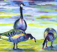 Canada Geese by Martin Kirkwood