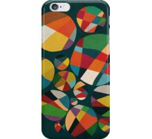 Wheel of fortune iPhone Case/Skin