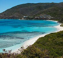 Caribbean Beach for One Person by Georgia Mizuleva