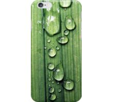 Macro Water Drop Plant iPhone Case/Skin