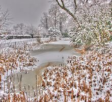 Frozen Pond by AndyHuntley