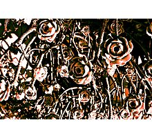 RED ARMY FLOWERS UPSIDE DOWN!!! Flowers Photographic Print
