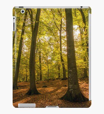 scenic autumn forest iPad Case/Skin