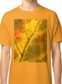Autumn Foliage 2 Classic T-Shirt