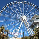 Sky Wheel by Cynthia48