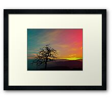 Old tree and colorful sundown panorama | landscape photography Framed Print