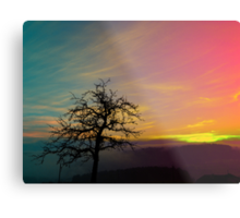 Old tree and colorful sundown panorama | landscape photography Metal Print