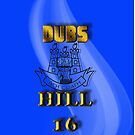 The Dubs on Hill 16 by Declan Carr