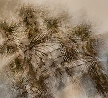 Palm Fronds by maxblack