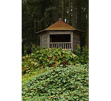Small wooden hut Photographic Print