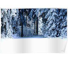 Snow Paradise Poster