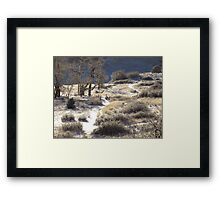 Crooked Path....Garden of the Gods...Colorado Springs Framed Print
