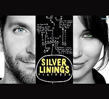 Silver Linings Playbook by elisabeth456