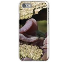 Singing Fungus iPhone Case/Skin