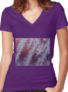 Arctic Garden II Women's Fitted V-Neck T-Shirt