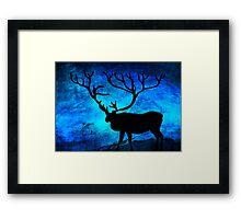 The deer at night... Framed Print