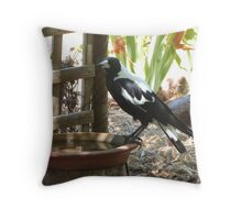 The Magpies know where to keep cool this Hot weather. 'Arilka' Throw Pillow