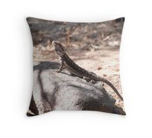 One of the native Bearded Dragons, 'Arilka' Mount Pleasant, Aust. Throw Pillow